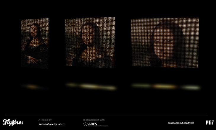 Flyfire, Raster Image Display – Mona Lisa