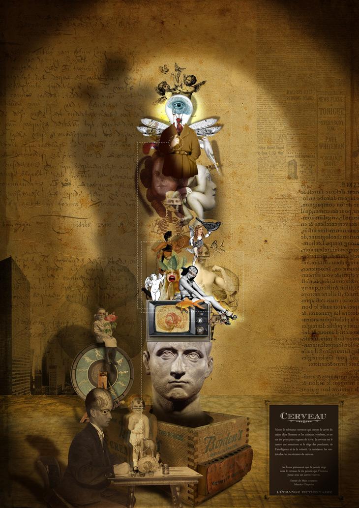 Cerveau - Casajordi